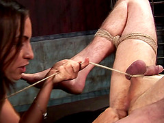 Beautiful dominatrix with long dark hair torturing a stranger