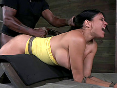Alluring Sheila Marie has fun while being fucked hardcore