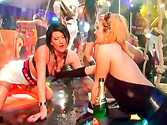 Good-looking babes of the city sucking cocks at the local nightclub