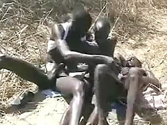 African gay group sex in the savanna
